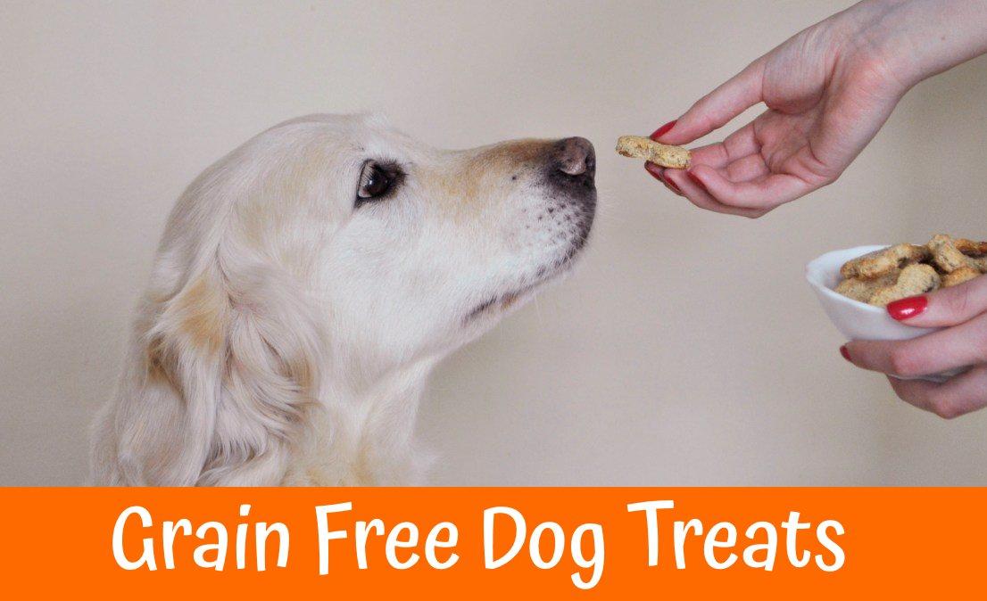 Top 10 Grain Free Dog Treats In 2018 Us Bones