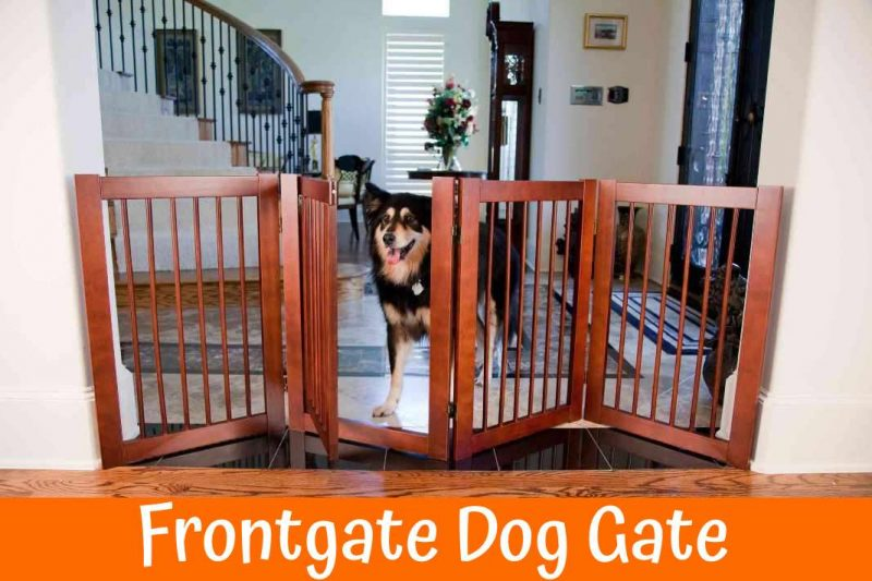 The Best Guide For Getting A Frontgate Dog Gate In 2018 Us Bones