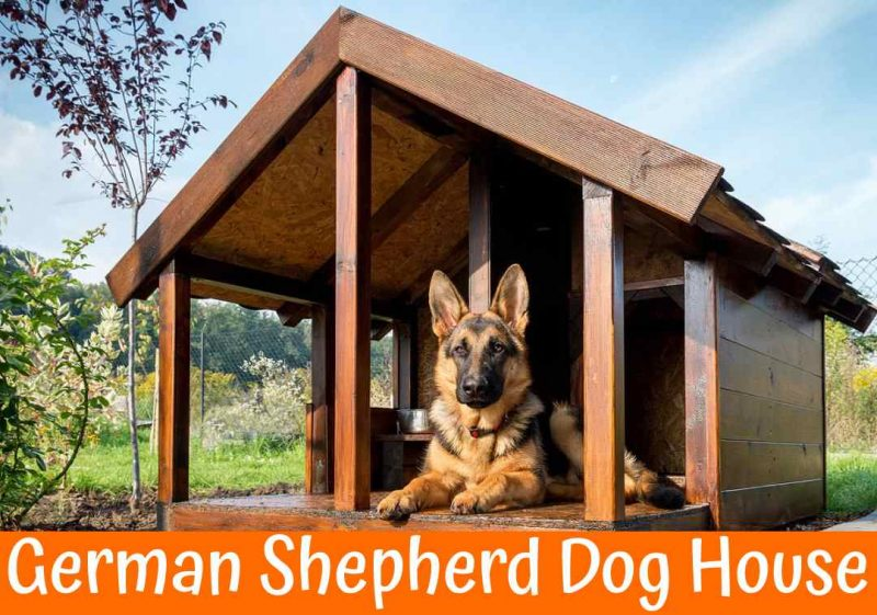 Large Dog House For German Shepherd