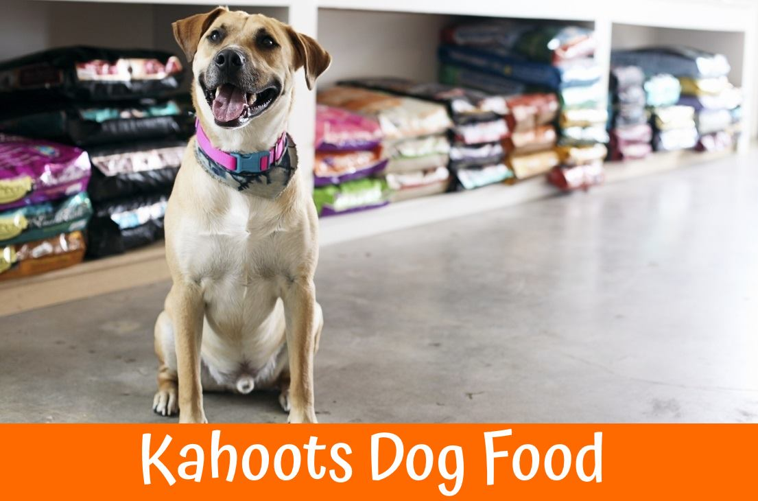 Kahoots Dog Food an Ideal Food Choice - Review in 2019 - US