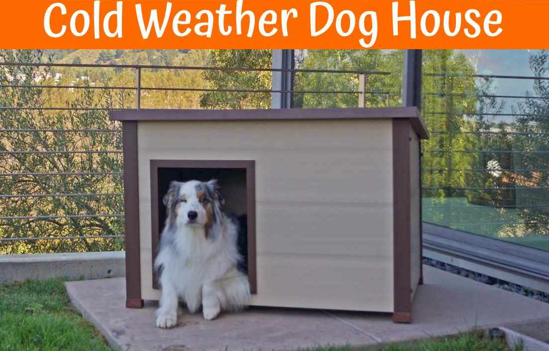 Best houses for cold weather 28 images diy cold for Best insulated dog house for cold weather