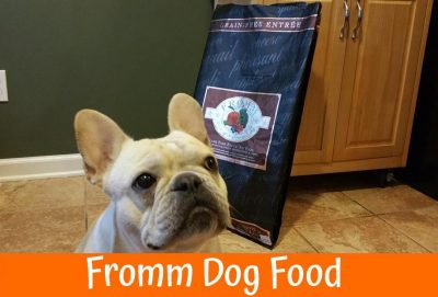 Best Grain Free Dog Food For Ear Infections