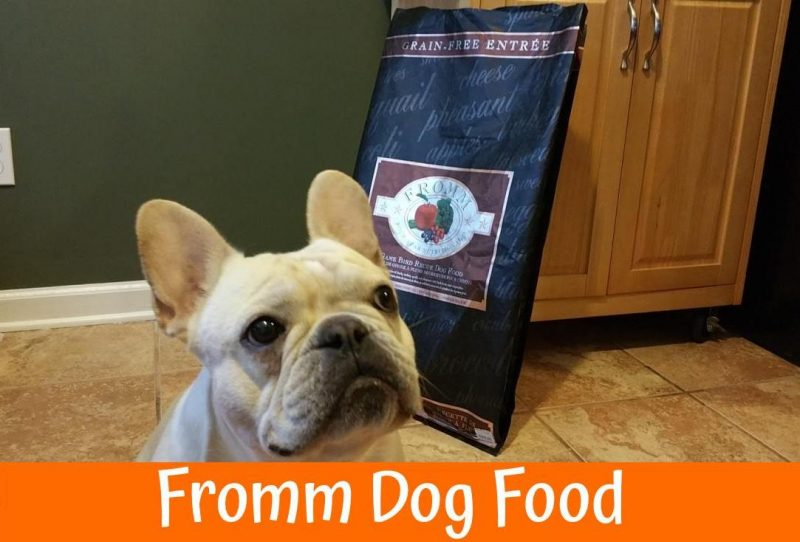 Who Makes Fromm Dog Food