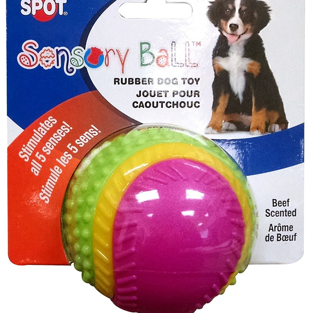 Ethical Pets Sensory Ball Dog Toy