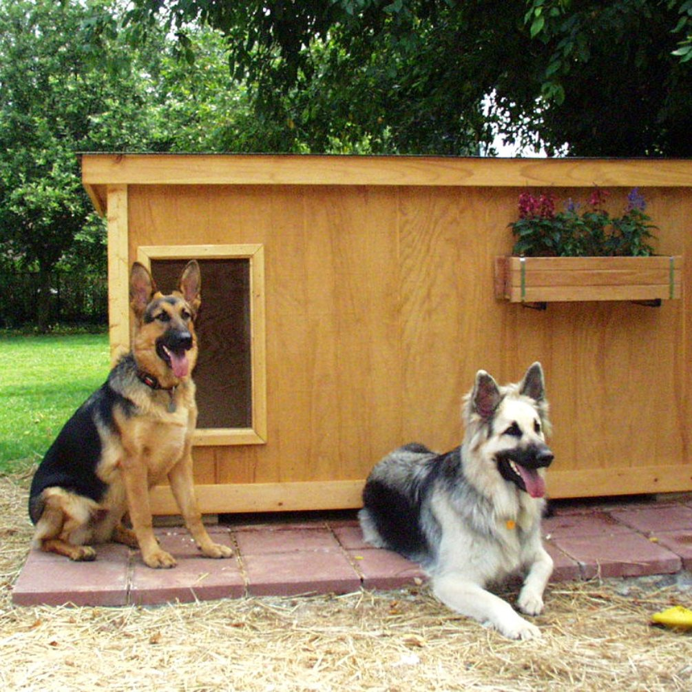 German Shepherd Dog House