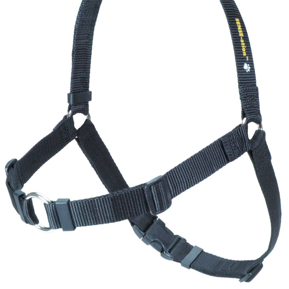 Best Front Harness For Dogs That Pull