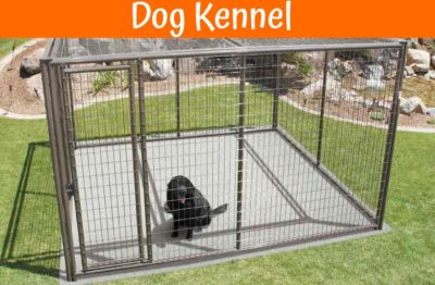 Best Rated Heavy Duty Dog Crates
